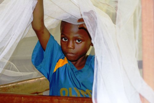 A young boy gets out of a mosquito net. Sleeping under a long lasting insecticide-treated net every night prevents malaria.