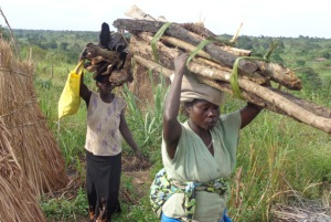 Women return homes from collecting firewood. Climate change is affecting access to firewood used in homes for cooking.