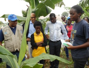 Gayaza High students explain to the FAO team led by Alhaji Jallow (L) what takes place in their banana plantation.